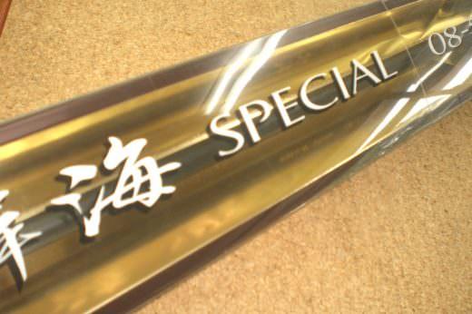 シマノ 鱗海スペシャル08-500